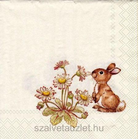 Szalvéta k0937 25*25 cm